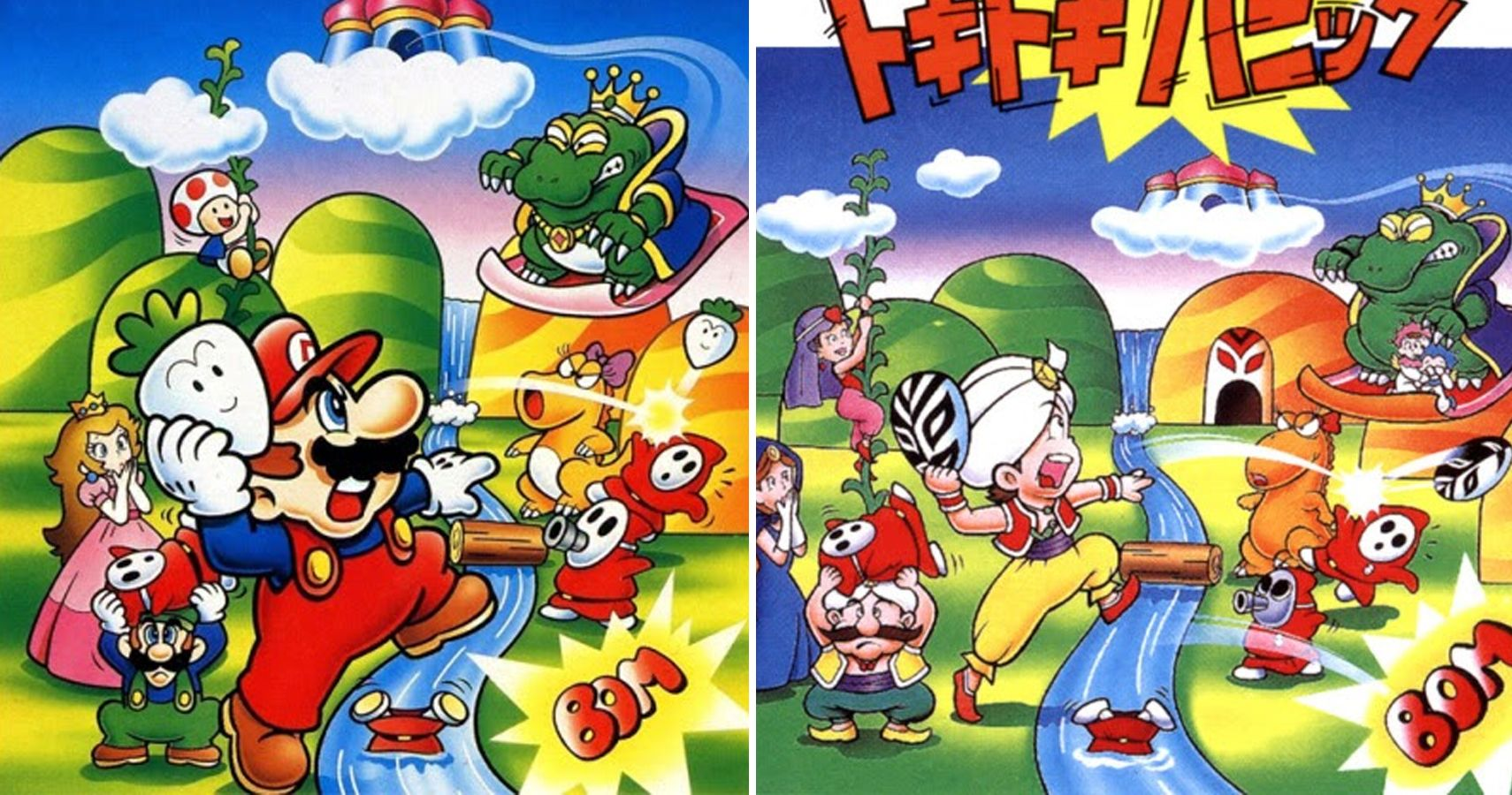 Black Sheep: 15 Things You Didn't Know About Super Mario Bros  2