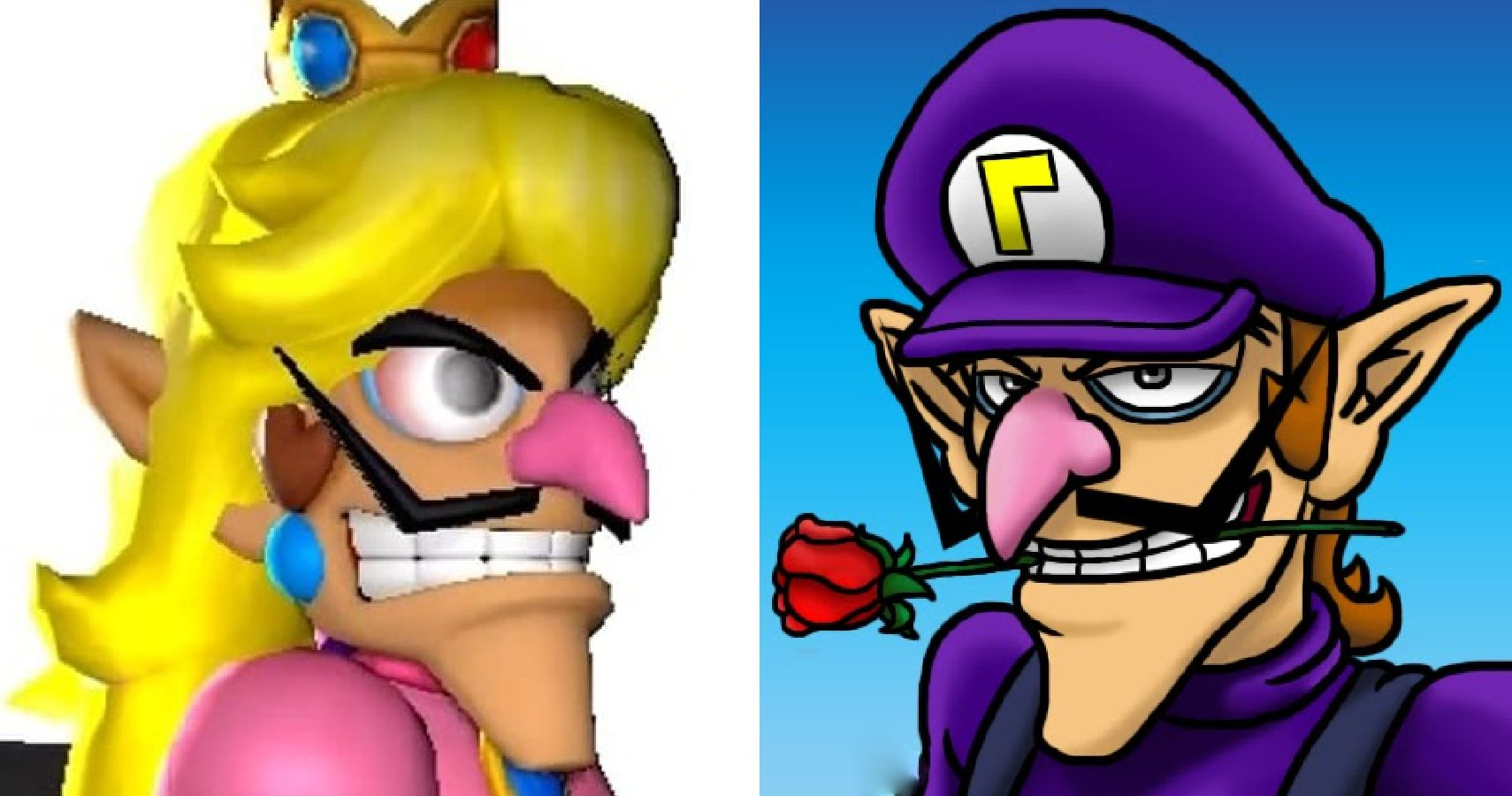 creepy brother shocking facts you didn t know about waluigi