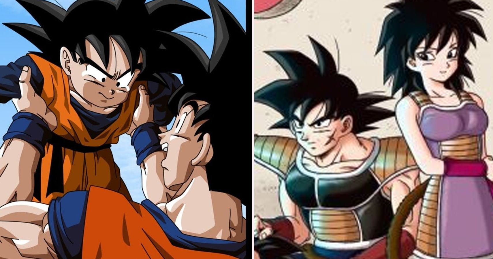 Dragon Ball Crazy Things You Didnt Know About Gokus Family