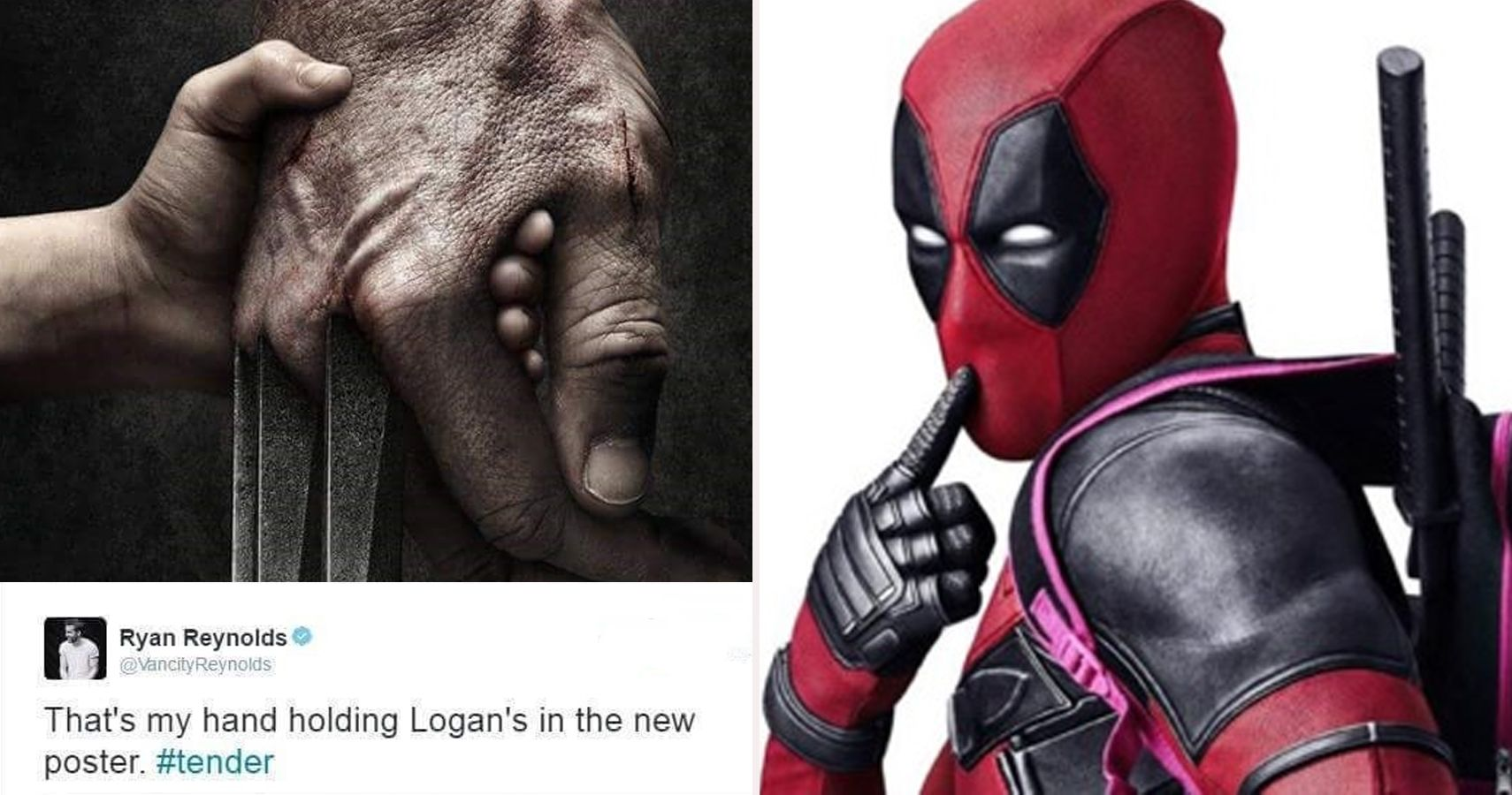 25 Hilarious Deadpool Vs. Wolverine Memes Only True Fans Will Understand