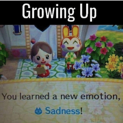 15 Hilarious Animal Crossing Memes Only True Fans Will Understand
