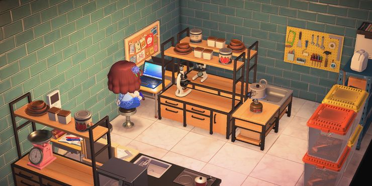 Animal Crossing The 10 Coolest Room Themes That Will Inspire You